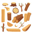 wood log and trunk cartoon wooden lumber plank vector image vector image