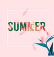 summer square flower pink background image vector image