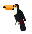 black toucan laying on the tree branch outdoor vector image