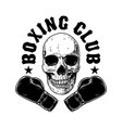 boxing club emblem template human skull with vector image