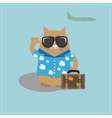 Cat tourist wearing sunglasses and a shirt with vector image vector image
