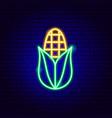 corn neon sign vector image