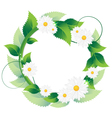 Daisies with green leaves vector image vector image