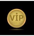 Golden VIP label vector image vector image