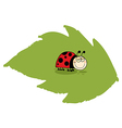 Happy Ladybug On A Leaf vector image vector image