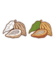 icons set cocoa beans vector image vector image