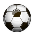 isolated of black and white soccer ball on white vector image
