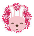 rabbit only face vector image vector image