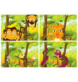 set wild animals in forest vector image vector image