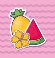 watermelon icon image vector image vector image
