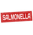 salmonella grunge rubber stamp vector image