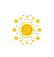 bitcoin cryptocurrency vector image