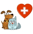 dog and cat with medical heart and cross vector image
