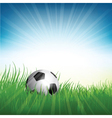 Football soccer ball nestled in grass vector image vector image