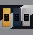 luxury vertical beautiful banner design vector image vector image