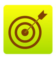 target with dart brown icon at green vector image vector image