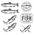 Vintage fresh fish salmon embles design elements vector image