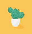cactus in a pot ceramic pot flat design vector image