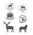 Deer and wolf Posters labels emblem vector image vector image