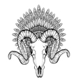 hand drawn goat skull in entangle feathered war vector image