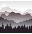 landscape with fir trees vector image vector image