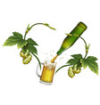 beer mug hop green beer bottle vector image vector image