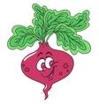 Fresh beetroot cartoon vector image vector image