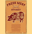 fresh meat poster template with meat cut on vector image vector image