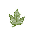 hand drawn green cannabis leaf logo designs vector image