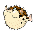 puffer fish cartoon vector image vector image
