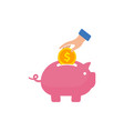 saving money in to piggy bank icon saving money vector image