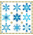 set of nine isolated snowflakes isolated vector image
