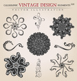 Stars Snowflakes vintage vector image vector image