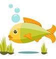 Cute Isolated Fish Cartoon vector image