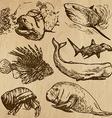 Underwater Sea Life set no4 - hand drawn vector image