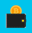 bitcoin wallet isolated flat vector image vector image