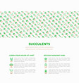 cactus and succelents in pots concept vector image vector image