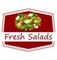 Fresh salads vector image vector image