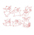 set of cute pigs isolated on white vector image vector image