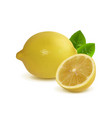 whole lemon and half a lemon vector image