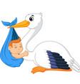 cartoon stork carrying cute baby vector image