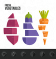 Fresh Vegetables Infographic vector image vector image
