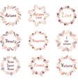 hand drawn set of autumn mandalas with vector image