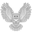owl coloring page vector image
