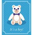 Baby Boy Arrival Card vector image vector image