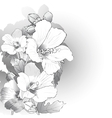 mallow flowers in black and white vector image
