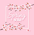 spring sale background with pink blooming sakura vector image vector image