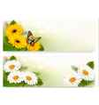 Summer banners with colorful flowers and butterfly vector image vector image
