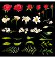 Vintage Lily and Rose Flowers Set in Watercolor vector image vector image
