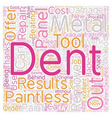 Paintless Dent Removal text background wordcloud